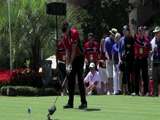 Robert Allenby swing video #2 from Tavistock Cup